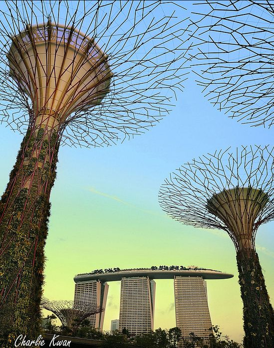 Gardens By The Bay Alive Museum: Marina Bay Sands And Gardens By The Bay