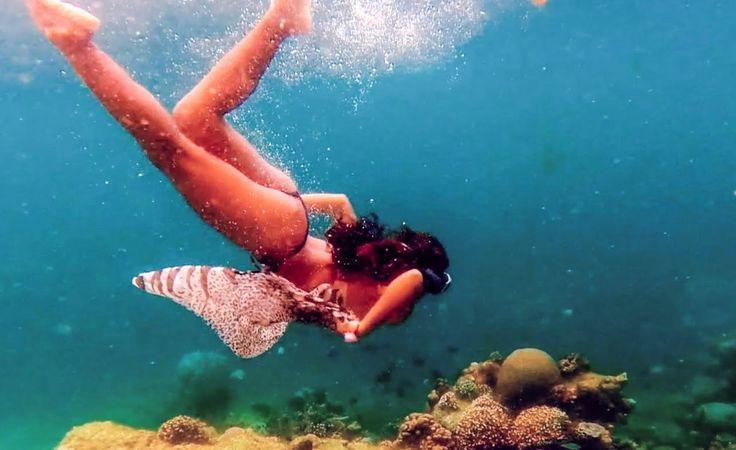 gopro underwater camera philippines | Beautiful Bikini Girl Swimming Underwater.GoPro video of Philippines Hidden Paradise/Roy Brewington - WATCH VIDEO HERE -> http://pricephilippines.info/gopro-underwater-camera-philippines-beautiful-bikini-girl-swimming-underwater-gopro-video-of-philippines-hidden-paradiseroy-brewington/      Click Here for a Complete List of GoPro Price in the Philippines  *** gopro underwater camera philippines ***  Beautiful Free-diving Bikini Girl swim