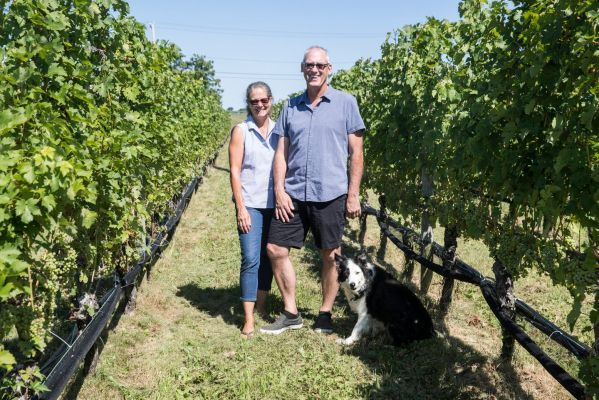 Shinn Estate Vineyards in Mattituck sold to N.J. couple
