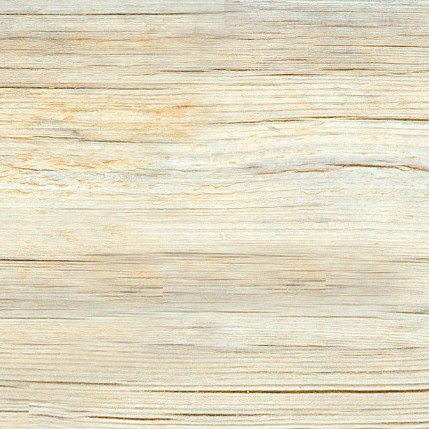 Textures   -   ARCHITECTURE   -   WOOD   -   Fine wood   -   Light wood  - White old raw wood texture seamless 04322 - HR Full resolution preview demo