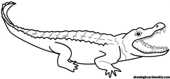 Alligator Coloring Page Free Coloring Pages Dinosaur Age Free Coloring Pages