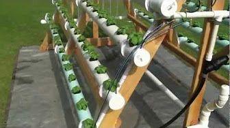 Υδροπονική καλλιέργεια: ένας κήπος σε κάθε διαμέρισμα. - YouTube