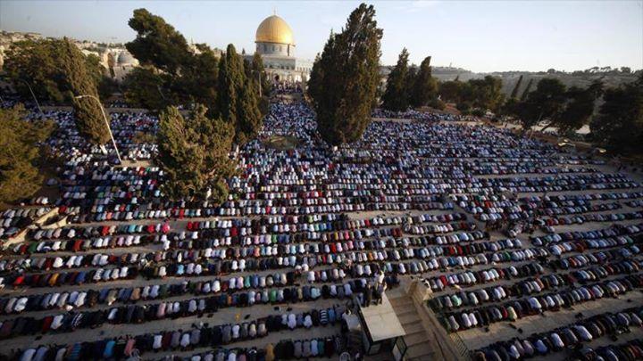 """Por qué Israel quiere silenciar la llamada a la oración en Jerusalén? """"Mientras que Israel tiene el poder de detener a los imanes demoler las mezquitas y evitar las llamadas a la oración la fe #Palestina ha mostrado una fuerza mucho más impresionante porque de una u otra manera Jerusalén nunca dejó de llamar a sus fieles y éstos nunca cesaron de orar. Por la libertad y por la paz"""" #IslamOriente  http://ift.tt/2eMsg9q"""