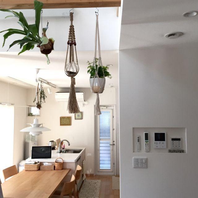 takeboo3さんの、Kitchen,ダイニングテーブル,北欧,吹き抜け,ニトリ,ルイスポールセン,シンプル,ダイニングチェア,コウモリラン,バーズワーズ,スイッチニッチ,プラハン,植物のある暮らし,シッサス・ヘンリアーナについての部屋写真