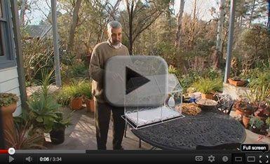 Burke's Backyard > Fact Sheets > Terrariums
