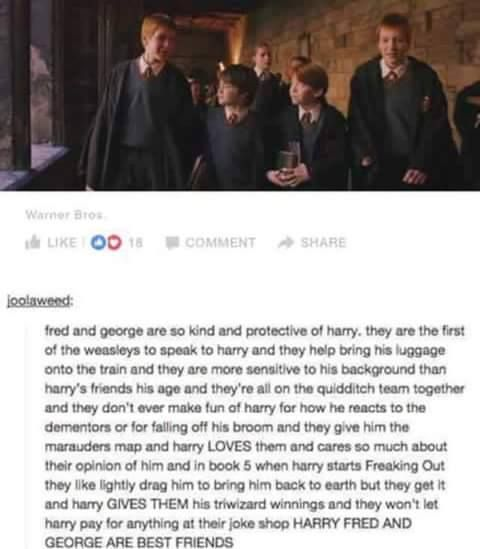 Fred and George adopting Harry as a Little Brother is my favorite Canon/Headcanon EVER.
