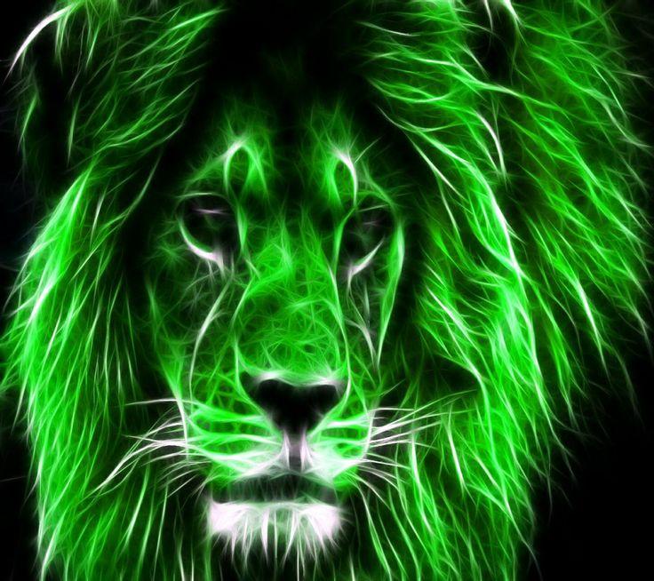 best 25 lion drawing ideas only on pinterest lion art