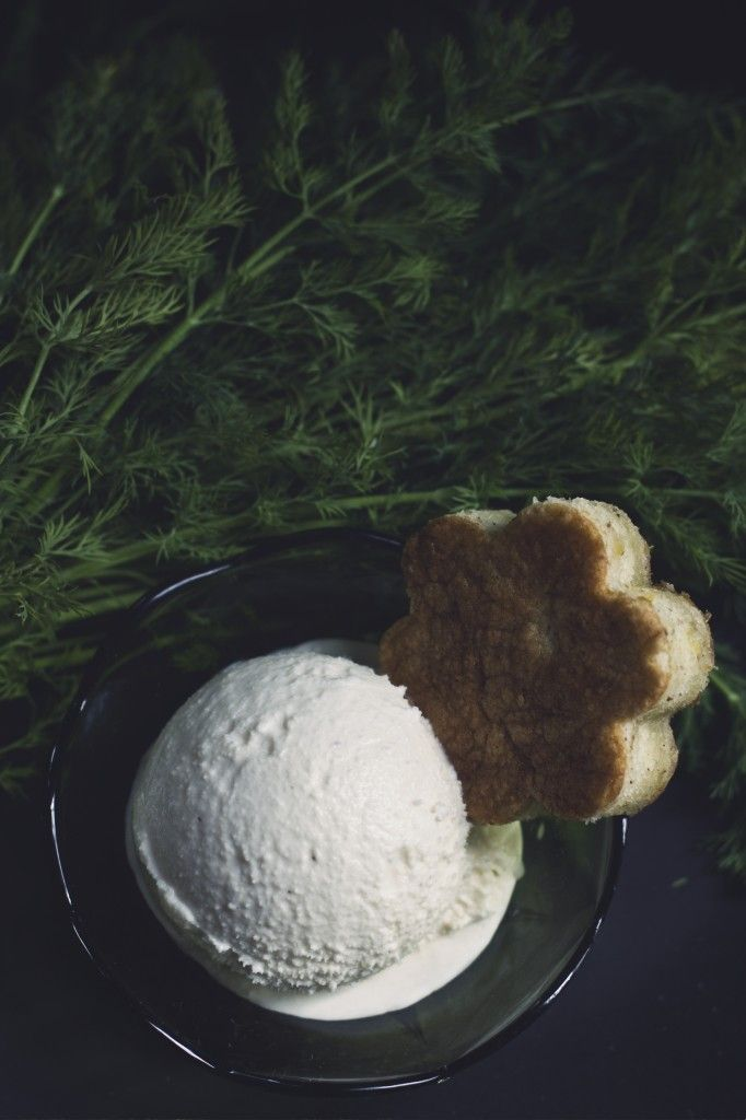 Fennel, Honey, Sea Salt Ice Cream! If you're looking for something refreshing and unique this recipe is for you! It also comes with two other recipes for Chamomile Lemon Olive Oil Cake and Candied Fennel!