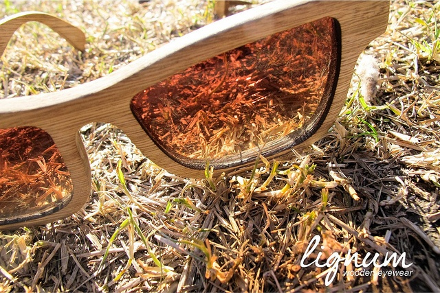 Lignum Wooden Eyewear by Blendshop Medellín, via Flickr