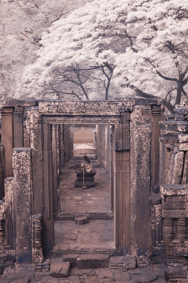 a statue of Buddha in a temple ruin in Cambodia
