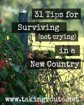 """""""31 Tips for Surviving (not crying) in a New Country""""   Taking Route     #write31days #expat #lifeabroad"""