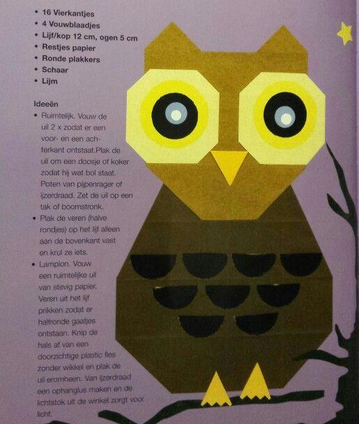Instructies platte uil vouwen, afkomstig van Liza Drewel :https://www.pinterest.com/ldrewel/