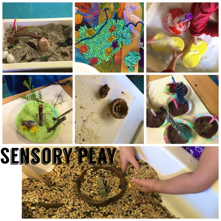 Selection of sensory play, dinosaur dig in sand, ocean sponge foam, soapy water, play dough and natural items children chose from the garden, clay, chocolate play dough and bird seed.