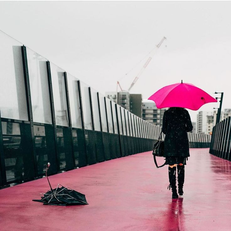 Today's the day to get a @bluntumbrellas built to withstand everything weather can throw at it! New delivery in stores now! #bluntumbrellas #loveweather #umbrella #stormtoday #designedinnz #shutthefrontdoorstore