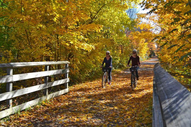 Grandtraversebiketours Leelanau Wine Trail Bike Tour