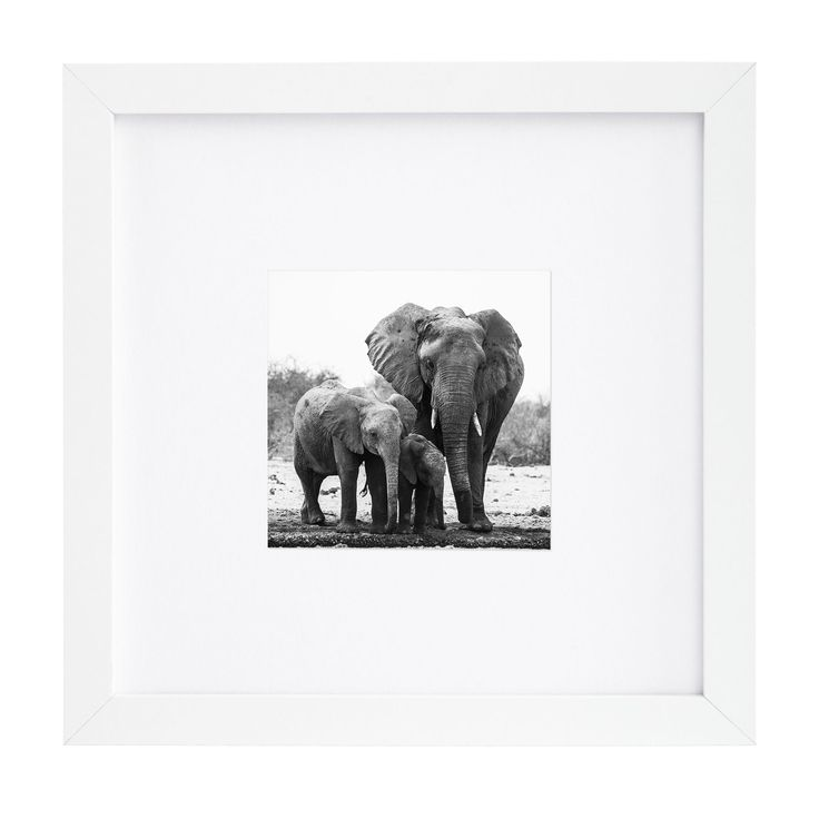 americanflat 8 x 8 inch white picture frame for 4 x 4 inch pictures