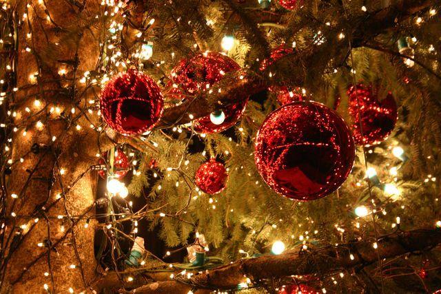 Esta es una imagen que representa la Navidad.