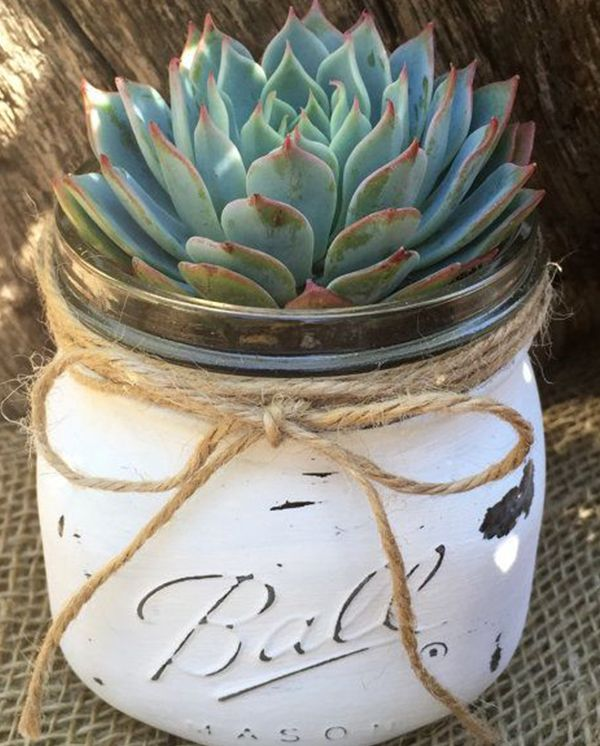 {Storyboard Wedding via Cambrian Co.}We all know the MANY uses for mason jars- from canning soups and sauces for the winter to juices and snacks. But how adorable do plants and succulents look in them?! I first spotted this adorable decor while having a latte at one of my favorite spots (and one…