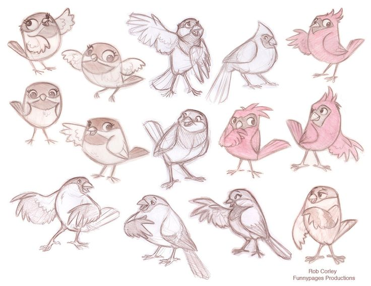 Preliminary designs of birds by chewgag on deviantART