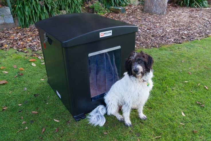 Kelvin the Thermo Kennel - TEACHING RESOURCE. Even a dog needs a healthy home. This resource introduces the concept of  insulation for warmth and health.