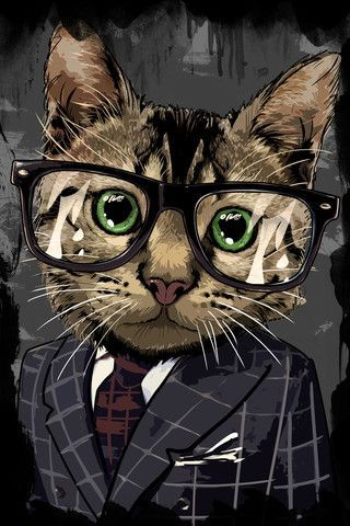 cat with cool glasses