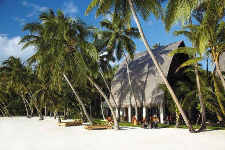Beautiful Beach With Coconut Trees And Rustic House Design On The White Sand At The Area Of Villingili Resort At Sunny Daylight