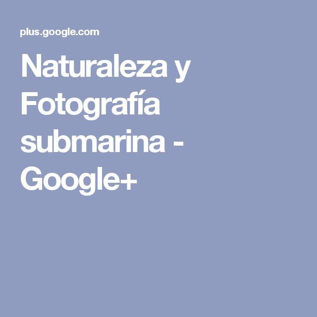 Naturaleza y Fotografía submarina - Google+
