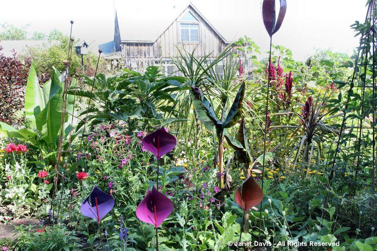 Artful Garden-Tod Waring-Calla Lily Stakes