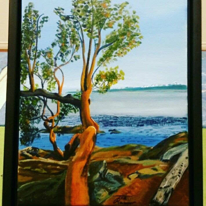 Arbutus over the Olimpic mountains Acrylic on stretched canvas 16x20