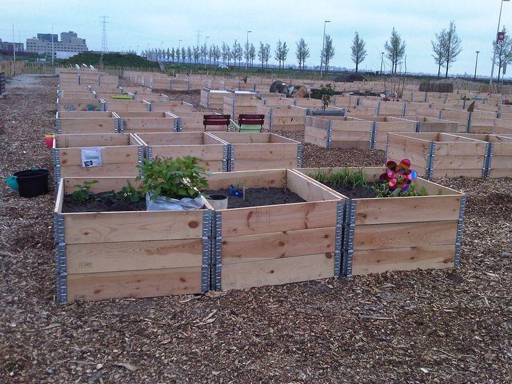 Urban Farming Ijburg Heritage Garden Pinterest