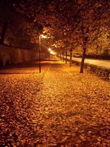 Podzimní večer