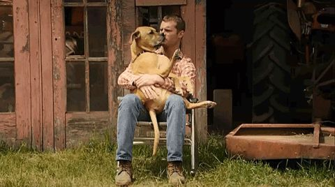 New party member! Tags: love dog man cravetv letterkenny dog lover