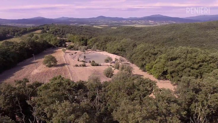 Azienda Agricola I Poggiarelli - Allevamento di Cinta Senese Renieri