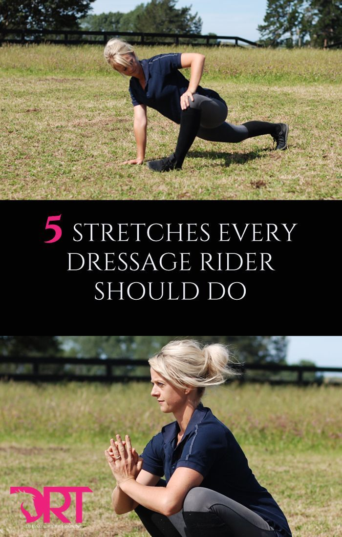 5 Stretches every dressage rider should be doing. Improve your mobility and flexibility at home by doing these stretches.