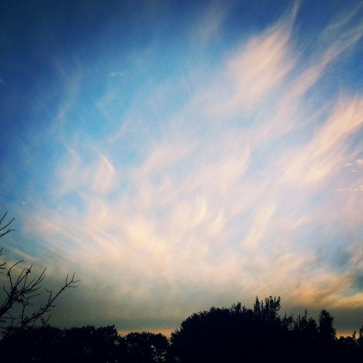 Paintbrush Skies, Somerset West South Africa