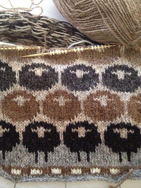 11 Best Knit Picky Images On Pinterest Knitting Patterns Hand