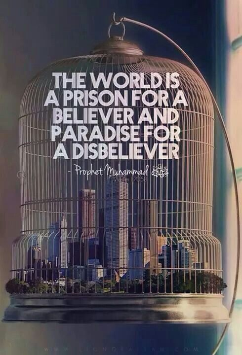 Brave and powerful words of Prophet (pbuh). Technology, sciences, and everything else.!