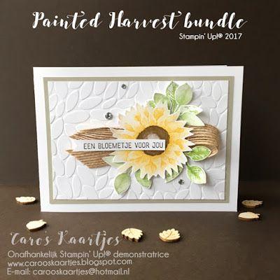 Caro's Kaartjes | Onafhankelijk Stampin' Up! demonstratrice | www.carooskaartjes.blogspot.nl | carooskaartjes@hotmail.nl | Stampin' Up! | Stampin' Up! verkooppunt | Painted Harvest bundle, Painted Harvest | herfst | zonnebloem | zonnebloemstempel | Recht uit het Hart | Nederlandse stempelset | zelfgemaakt | crafting | knutselen | kaarten maken | cardmaking | stempelen | stamping | scrapbook | creatief | creative | diy| creatief westland | Westland | Stampin' Up! Wateringen | Stampin' Up…