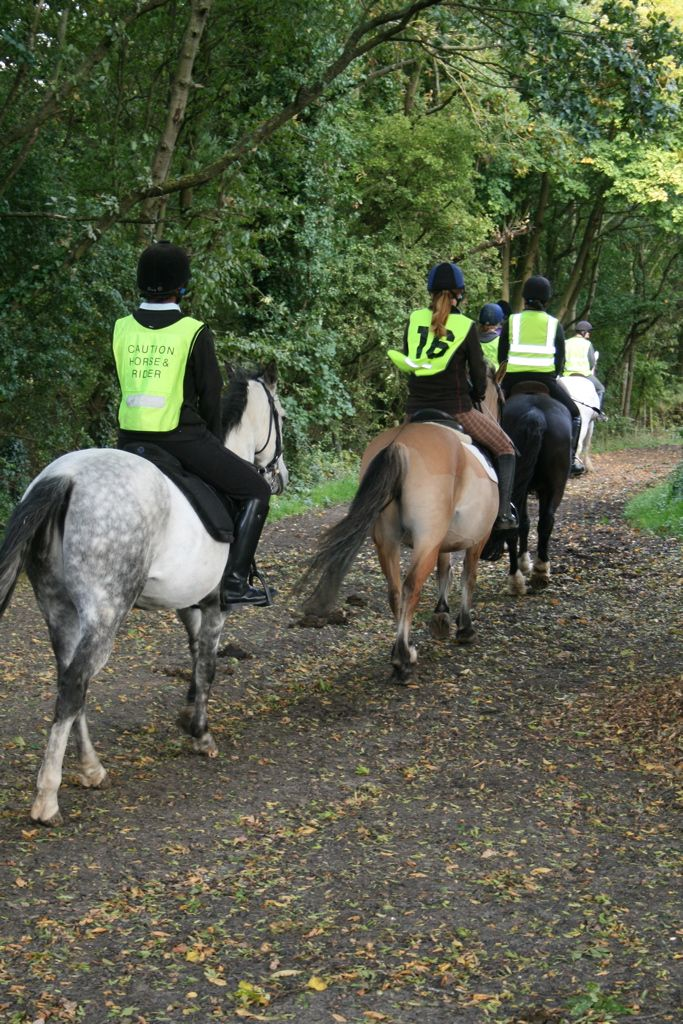 hacking out in our Trent Park bridal paths are the best