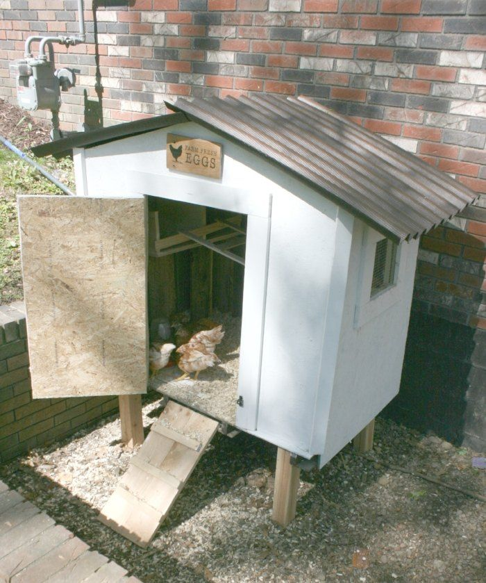How+to+Build+a+Chicken+Coop+From+Repurposed+Pallets