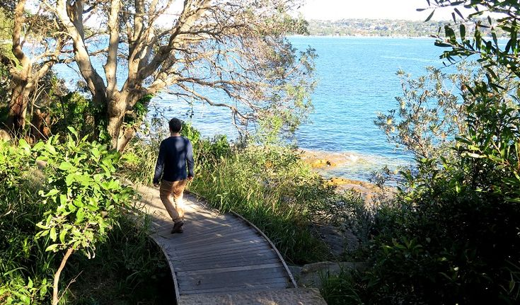 Hermitage Foreshaw Track - back of Kambala to Nielson Park. Pack a picnic and swimmers for Nielson Park. 30 mins one way. 1 hr return. No dogs. Easy.