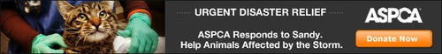 ASPCA responds to Hurricane Sandy