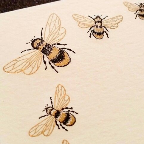 Engraved Bumble Bee from The Grosvenor Stationery Company