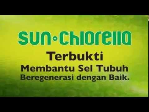 Sun Chlorella Membantu Regenerasi Sel Tubuh Anda