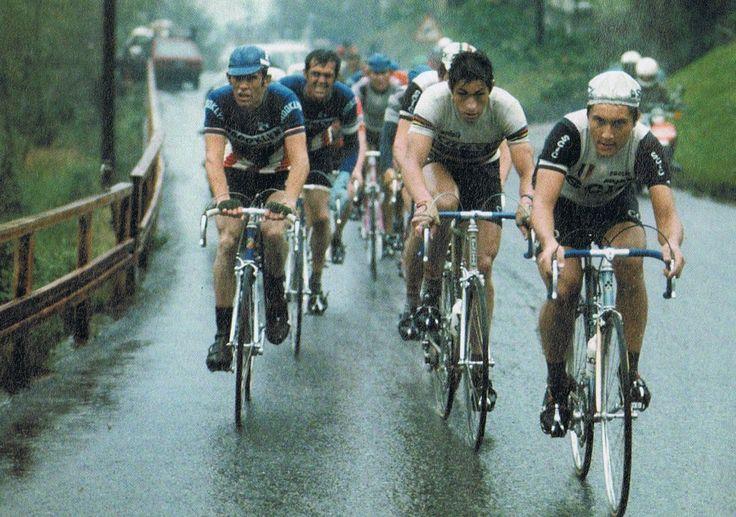 Giro di Lombardia 1977, 8 ottobre. Seveso > Como. Da sin. Johan De Muynck (1948), Roger De Vlaeminck (1947), Francesco Moser (1951) e Giuseppe Saronni (1957)