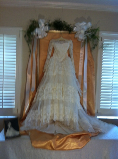 Wedding Dress used at 50th Anniversary Party, really beautiful