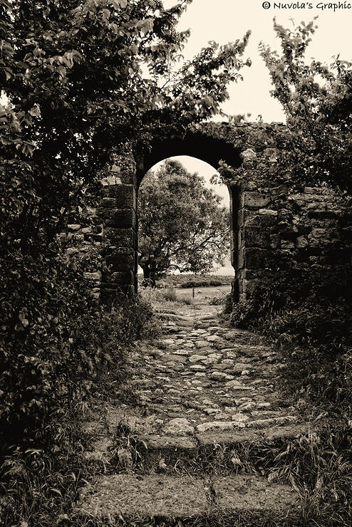 Una porta sulla natura by Nuvola's Graphic @ http://adoroletuefoto.it