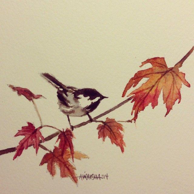 """November Chickadee."""