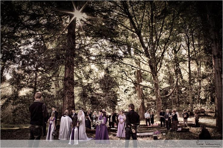 Wedding Images for Marvin & Brenda – Hogsback