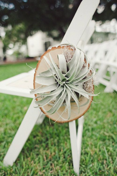 10 Succulent Wedding Ideas: hanging ceremony chair plants